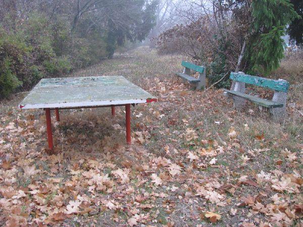 Németvölgyi Strandfürdő pingpong asztal
